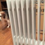 【暖房選び②】ユーレックスオイルヒーターを一週間使ってみた【LFX12EH】子どもや愛犬にも優しいよ♪