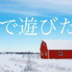 【愛犬と行く】氷ノ山で大満足の雪遊び① 関西発~西紀SA~但馬のまほろば~古代あさご館~ようか但馬蔵