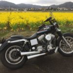 関西の田舎道バイクでツーリング旅【半日編】