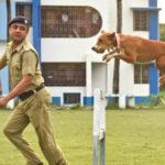 インドの野良犬が警察犬のトップに!救助されたパリア犬がエリート部隊に加わる