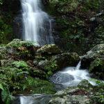 【丹波篠山市】筱見四十八滝(ささみしじゅうはちたき)は48個の滝があるの?