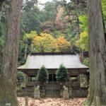 【青玉神社】腰痛に御利益!樹齢1000年以上の御神木に囲まれたパワースポット
