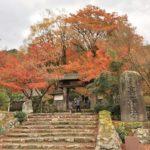 紅葉の名所『高源寺』は自然が織りなす美の芸術だった!